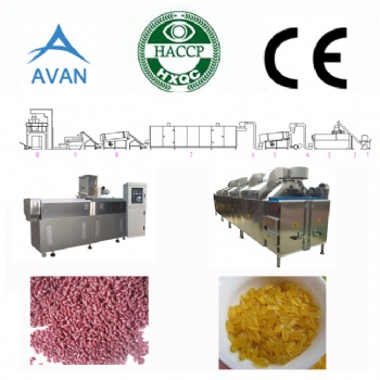 Artificial rice machine plant